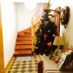 Noël aux gîtes le59 en Alsace