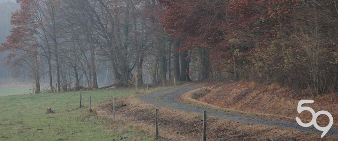 Paysage d'automne Près de Cosswiller